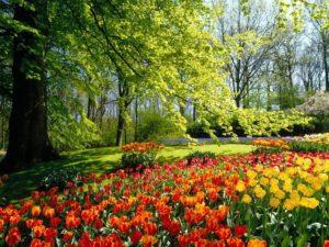 Парк Чехия