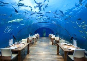 Рестораны и виллы Conrad Maldives Rangali Island  названы лучшими