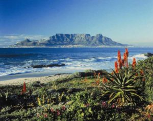 8 чудо Света в Кейптауне - Столовая гора