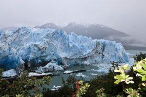 Ледники в Лос-Гласьярес. Аргентина