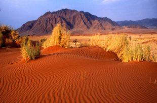 Кызылкумы - Красные пески