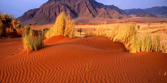 Кызылкумы — Красные пески