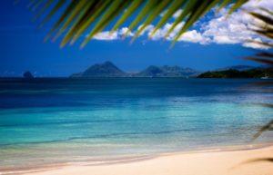 Мартиника. Остров цветов