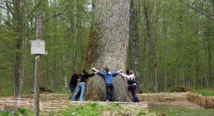 Едем в Беловежскую Пущу… в Польшу