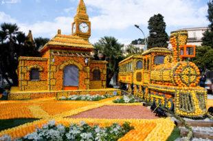 Фестиваль лимонов