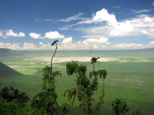Сафари в Танзании — Акуна Матата